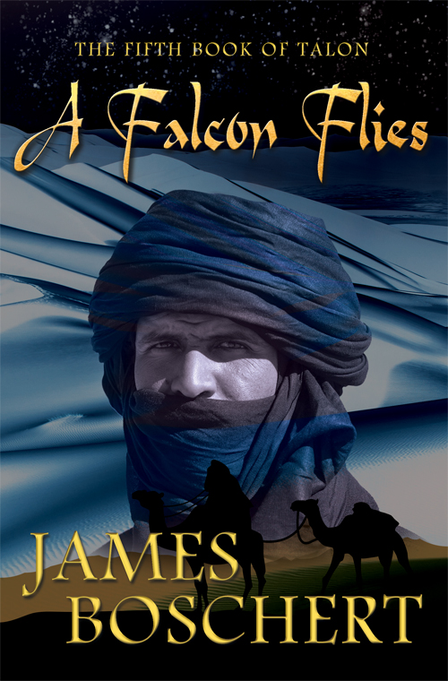 A Falcon Flies by James Boschert